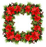 Christmas square frame with pine twigs, cones, berries and poinsettia flowers royalty free stock photography