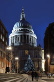 Christmas at St Pauls. St Pauls Cathedral traditional Christmas tree Stock Photography