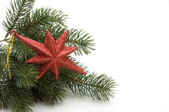 Christmas star. With loop and fir branch Royalty Free Stock Photos