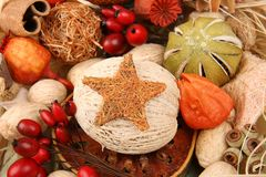 Christmas star Stock Image
