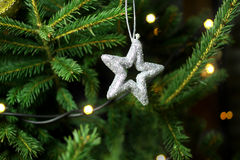 Christmas star on christmas tree branch Stock Photos