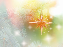 Christmas star on Christmas tree Royalty Free Stock Images