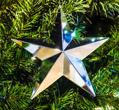 Christmas star. Hanging in a tree Stock Photo