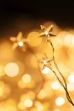 Christmas star lights Stock Photo