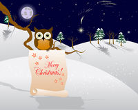 Christmas star and Owl. Stock Images