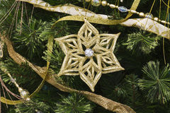 Christmas Star and Pine. Decoration for Wallpaper or Background stock images