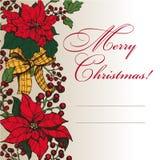 Christmas star 6 Stock Photography