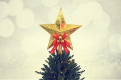 Christmas star on the tree decoration Stock Photos