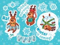 Christmas sticker set. Reindeer Santa Royalty Free Stock Photos