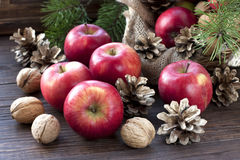 Christmas still life with apples and pine cones Stock Images