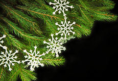 Christmas still life on black background.. Stock Photos