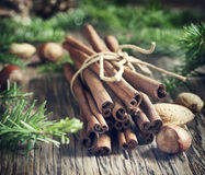 Christmas still life: cinnamon, nuts and fir branches Royalty Free Stock Images