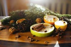 Christmas Still Life, Citrus Nuts, Cinnamon, Fir Cones Royalty Free Stock Photos