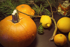 Christmas still life with fruits. Christmas still life with citrus fruit, pumpkin and fir branches Stock Image