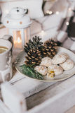 Christmas still life with tea, lights, cones and cookies Royalty Free Stock Image