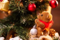 Christmas still life with toy bear Stock Photography