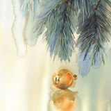 Christmas still-life watercolor background. With color bubbles and christmas tree branches. Christmas card Stock Image