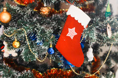 Christmas stocking on Christmas tree Stock Photo