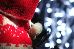 Christmas stocking on a tree with Christmas lights Royalty Free Stock Images