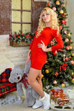 Christmas story or dream in Christmas. Merry girl in red dress standing next to a Christmas tree bowl of paw teddy bear. Volgograd region, Russia, November 8 Stock Photography