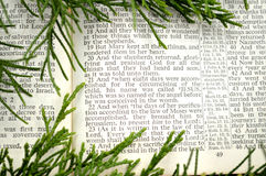 Christmas story, with greenery Stock Images