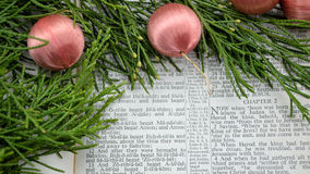 Christmas story and greenery with pink ornaments Stock Images