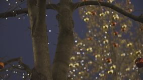 Christmas street decoration. Building, trees in garlands,street decoration. Beautiful Christmas red and yellow decorative balls hanging on the trees against stock video footage