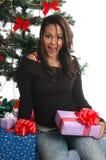 Christmas Surprise Royalty Free Stock Image