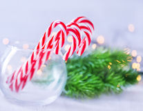Christmas sweety Royalty Free Stock Photography