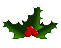 Christmas symbol holly berry. Holly berry illustration. Three leaves with fruits stock illustration