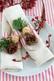 Christmas table place setting Royalty Free Stock Images