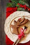 Christmas. royalty free stock photo