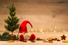 Christmas tad sitting next to fir tree and x-mas decoration in f. Red christmas wretch next to fir tree and cinnamon sticks and anise in front of lights Stock Images