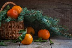 Christmas tangerines, old wooden background, russian new year tradition. Toned Stock Image