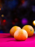 Christmas tangerines Royalty Free Stock Image