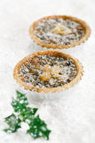 Christmas  tart with mincemeat and candied peel Stock Photos