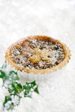 Christmas  tart with mincemeat and candied peel Royalty Free Stock Photos