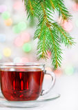 Christmas tea and fir branch Stock Photography