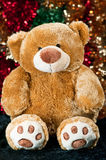 Christmas teddy Stock Images
