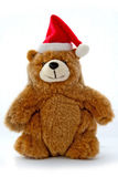 Christmas Teddy Bear. With a Santa hat against a white background Stock Photo
