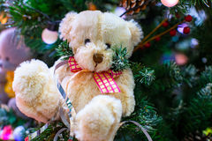 Christmas teddy bear. On christmas tree stock images