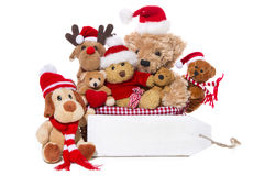 Christmas, teddy bears isolated on white background - concept fo Stock Photos