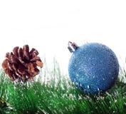 Christmas template. Christmas blue ball on branch fir tree Stock Image