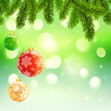 Christmas template with hanging balls fir tree. Christmas vector template with hanging balls fir tree branches on green bokeh background Stock Photos