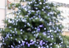 Christmas texture with bokeh. Abstract background Stock Images