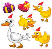 Christmas theme with ducks and presents Royalty Free Stock Images