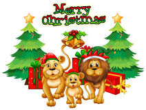 Christmas theme with lions and trees Royalty Free Stock Photos