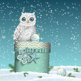 Christmas theme, white owl sitting on blue gift box in snowy landscape, illustration Stock Photos