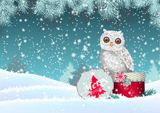 Christmas theme, white owl sitting on red gift box in snowy landscape, illustration Royalty Free Stock Photo