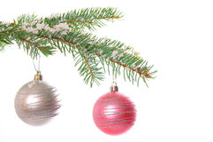 Christmas time. Fir branch and christmas decoration Stock Photography